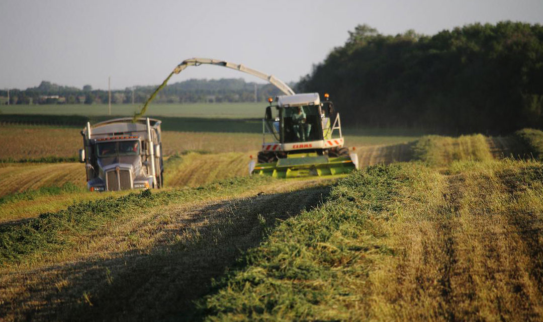 Harvesting haylage: A tricky endeavor and considerations for the future
